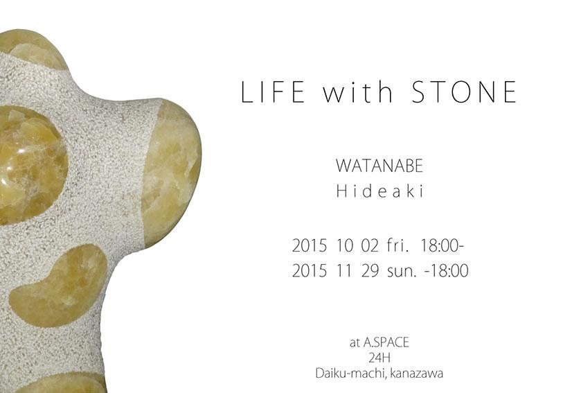 2015_01_watanabe_DMo